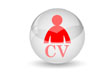 IT Recruitment, CV